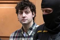 Krajský soud v Brně ve čtvrtek prodloužil vazbu Kevinu Dahlgrenovi, který podle obžaloby zavraždil v Brně-Ivanovicích čtyři své příbuzné. Důvodem je riziko útěku.
