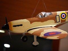 Výstava modelů vojenských letounů a lodí.