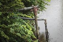 Zahrádkáři na březích Svratky a Svitavy se bojí případného zákazu odběru vody z řek.