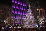 Rozsvěcení vánočního stromu.