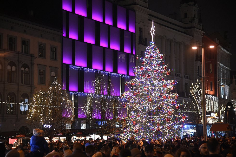 Vánoční strom na náměstí Svobody v Brně.