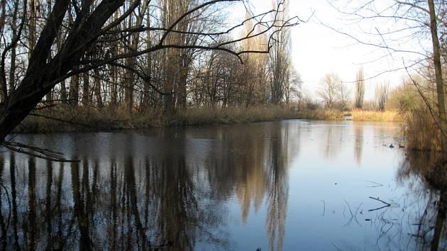 Holásecká jezera - ilustrační foto.