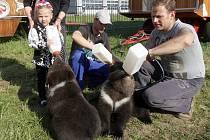 Jmenují se Max, Šanty a Berry. Rádi pijí mléko z lahve a chodí na procházky. Medvědí trojčata se narodila a vyrůstají v cirkuse Berousek. Lidé se s nimi při představení cirkusu, který je až do pátku v Brně, mohou vyfotit.