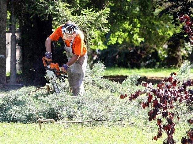 Kvůli úpravě parku na speciální hřiště v projektu Plácky zlikvidovali dělníci v Jílové ulici i některé keře a stromy.