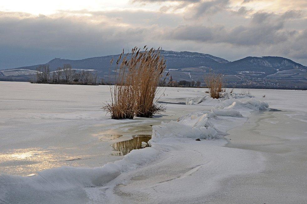 Zamrzlá Věstonická nádrže pod Pálavou, 16. února 2012.