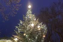 Vánoční strom v Brně-Kníničkách.