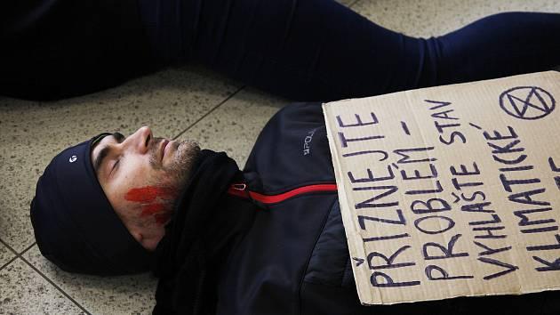 V Letmu ležely mrtvoly. Aktivisté upozorňovali na vymírání zvířat a rostlin