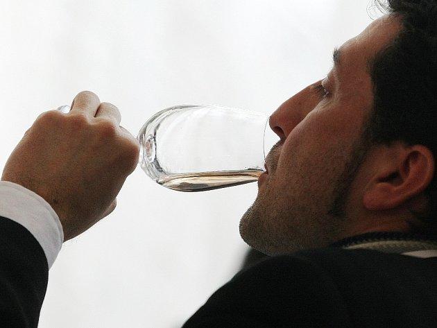 Z 928 vzorků vín vybírali šampiony už šestatřicáté Jihomoravské regionální výstavy vín.