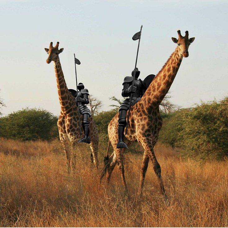 8.Většina lidí tvrdí, že kůň, na kterém Jošt Lucemburský sedí, má dlouhé nohy jako žirafa. Lidé na internetu vytváří netradiční fotografie a fotomontáže sochy Odvahy znázorňující Jošta Lucemburského.