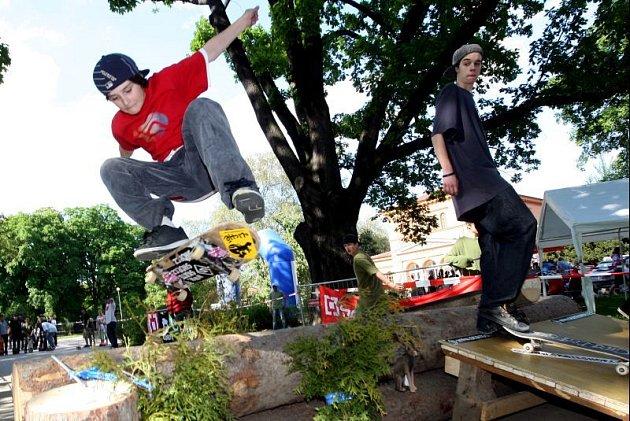 Přestože Skate Fest 2008 vyhrál jen jeden, pohodového dne si užili všichni.