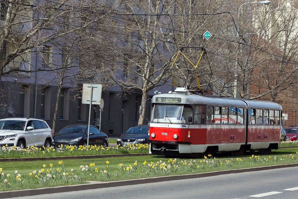 Tramvaj v ulici Nové sady.