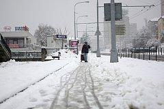 Brno zasypal první sníh. Poslední listopadový den měli bílou nadílku i v Kohoutovicích.