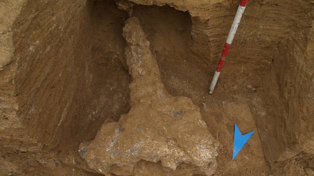 Zubr stepní z Líšně je starý 150 až 200 tisíc let.