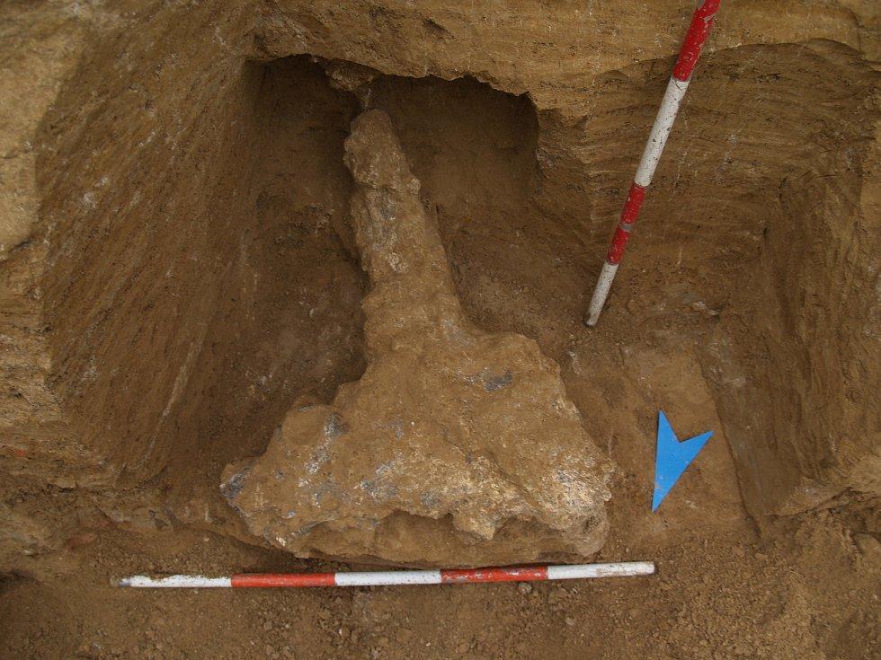 Zubr stepní z Líšně je starý 150 - 200 tisíc let.