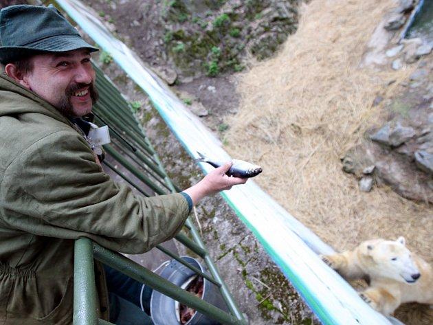 """Coru by Jaroslav Jasinek z ruky nekrmil.""""Vzala by si rybu i s prsty,"""" směje se. Medvědici s mláďaty nosí jídlo ráno a odpoledne. Medvídci si kromě ryb stále pochutnávají na mateřském mléce."""