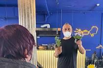 V kavárně Podobrazy je od pondělka zahradnictví. Lidé nakoupí květiny či zeleninu od lokálních pěstitelů.