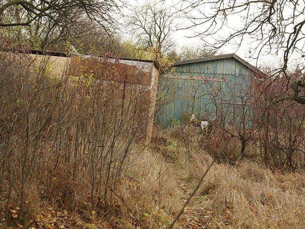 Většina koloníí je v žalostném stavu. Lidé se o pozemky ani zahradní domky nestarají.