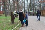 V brněnské zoologické zahradě připravili na Štědrý den komentované krmení vybraných zvířat, například levhartů.