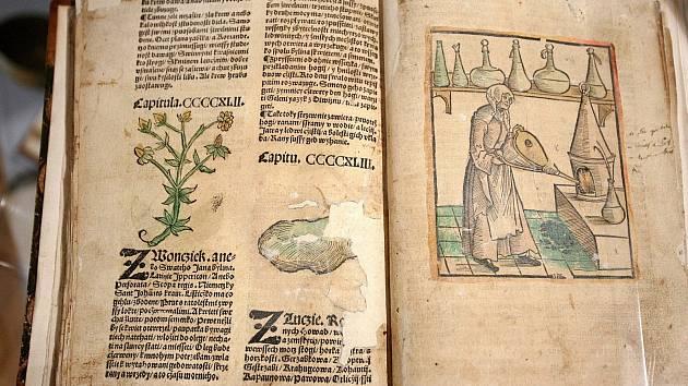 Výstava Na každou nemoc roste bylina v Památníku písemnictví na Moravě v Rajhradě.