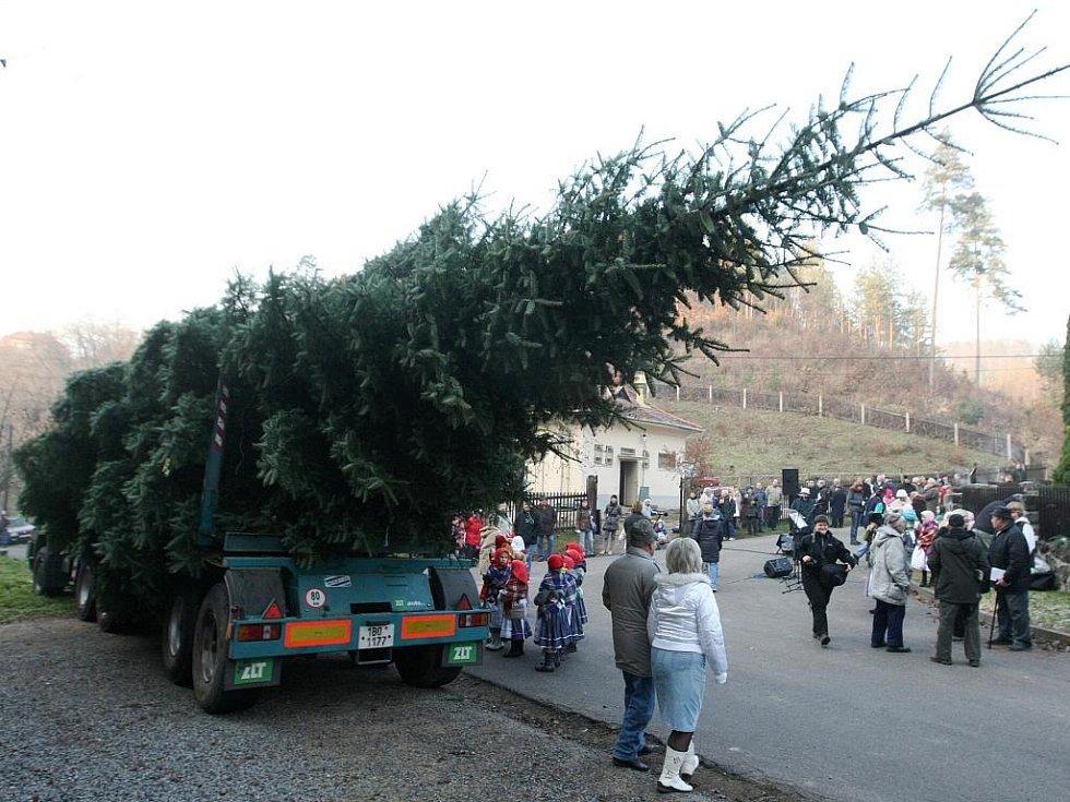 Předání vánočního stromu pro Brno v Bílovicích nad Svitavou.