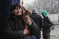 Lidem bez domova s jejich psy se ve středu otevřely dveře Armády spásy v Mlýnské ulici. Filantropka Milada Váňová jim tam předala vánoční dárek v podobě teplých ponožek i krmení pro jejich mazlíčky.