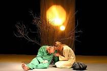 HRA SVĚTLA. Divadelně–hudební soubor z Kobylí na Břeclavsku si zakládá na světelných efektech a symboličnosti.
