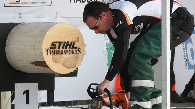 Soutěžící dřevorubci na brněnském výstavišti.