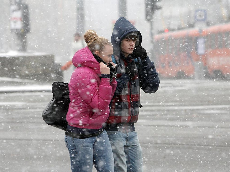 Přívaly čerstvého sněhu zasypaly téměř celý Jihomoravský kraj.