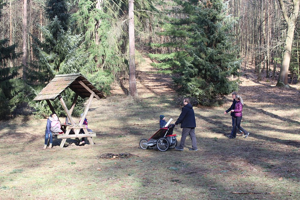 Lidé se v Arboretu Řícmanice dozvěděli spoustu zajímavostí o jehličnanech.