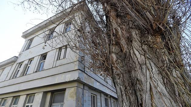 Foto: Tady může vzniknout koronavirové centrum pro bezdomovce