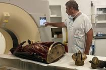 Počítačová tomografie sošky Černé Madony z brněnského Paláce šlechtičen.