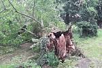 Čtyřicet událostí souvisejících s počasím o víkendu zaměstnalo jihomoravské hasiče. Převážně se jednalo o spadené stromy.