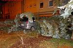 Na stříbrný peugeot spadl v neděli večer v Brně velký jehličnan.