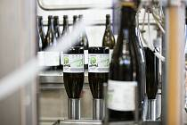 Dvanáctku Mendelbier uvařil pivovar Moravia ve spolupráci s Mendelovou univerzitou v Brně.