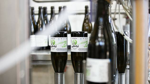Studenti z Mendelovy univerzity mají vlastní pivo. Dvanáctku Mendelbier