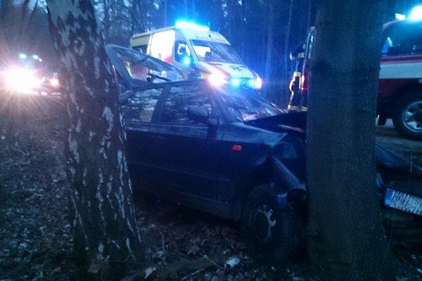 Auto vrazilo uZakřan do stromu.
