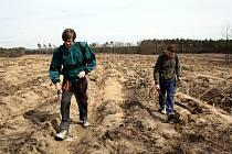 Na počátku března začalo zalesňování shořelých ploch. Kvůli mrazu ho lesníci museli přerušit. Součástí vysazování nových sazenic je i stříkání. To má zabránit, aby se nově vysázené stromky nestaly potravou pro zvěř.