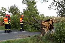 Následky silného větru na jižní Moravě.