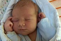 Sebastian Sova, 29.8.2021 v 15:45 hod.,  matka Michaela Sovová, Čejkovice, Nemocnice Kyjov, 3810 g, 51 cm.