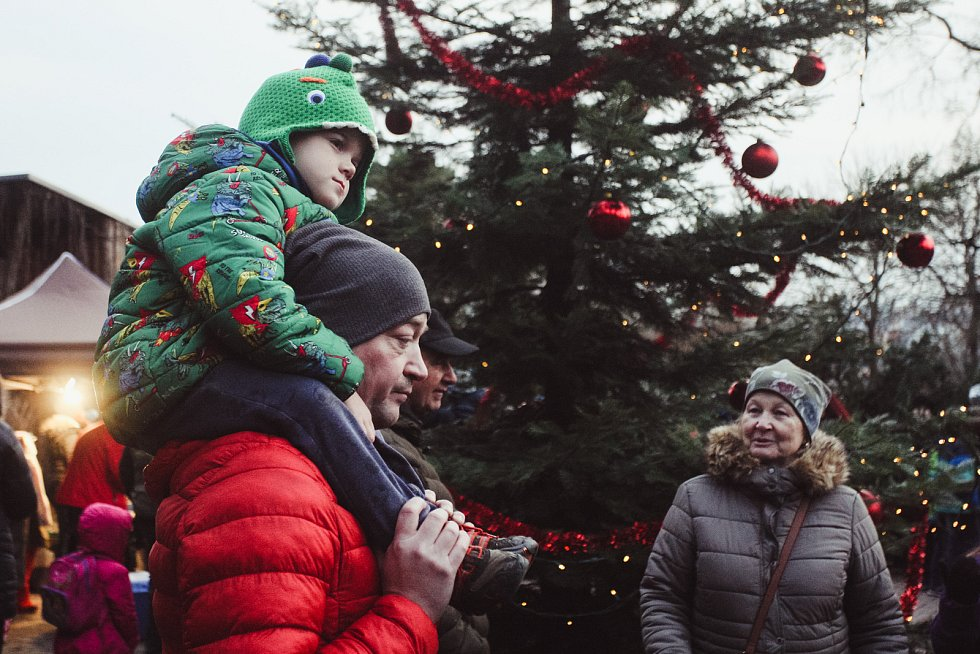 V neděli rozsvítili vánoční strom v brněnské zoo. Hrály tam i děti na flétnu.