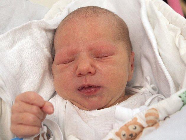 Fialová Nela z Měnína narozená 5.11.2014 v Nemocnici Milosrdných bratří.