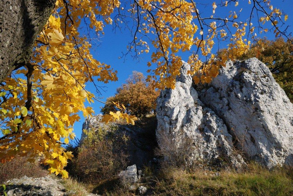 Chloubou krajiny kolem vrchu Děvín jsou vápencové skály, ke kterým se vztahují i staré legendy. Na jaře na nich rozkvétají různé druhy květin a vidět jsou i třiceticentimetrové ještěrky. Své kouzlo má i zřícenina hradu Děvičky.