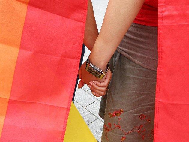 Queer Parade v Brně.