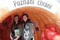Akce Střevotour v centru Brna ukázala zájemcům, jak vypadají onemocnění tlustého střeva.