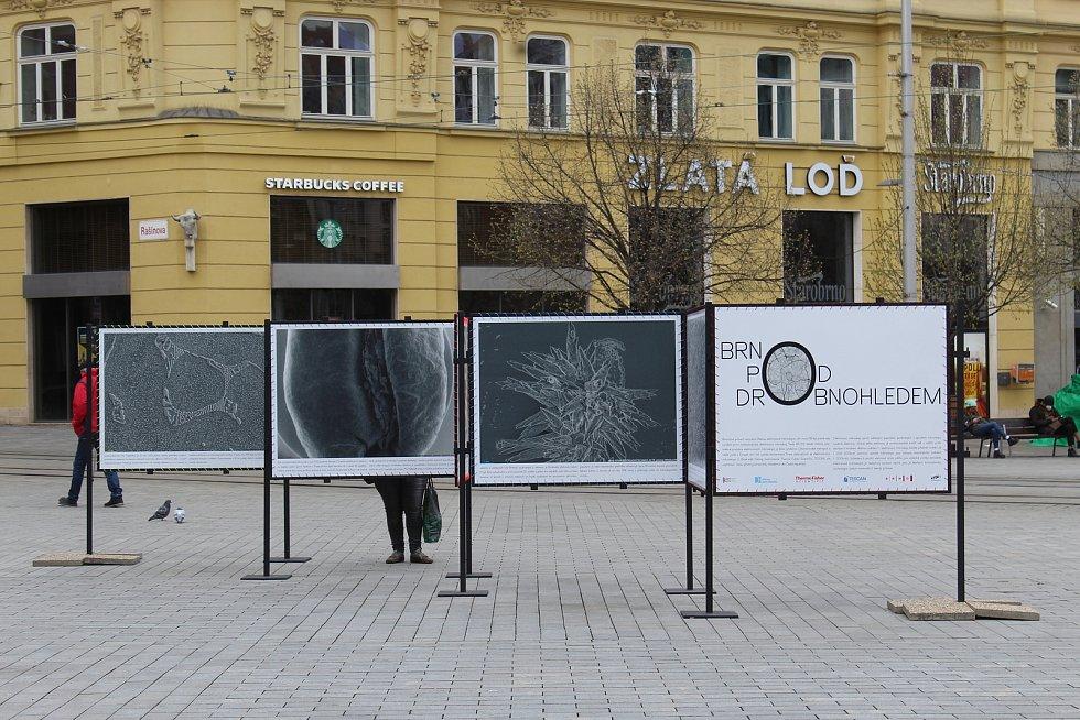 Obří nanostruktura zdobí náměstí Svobody k příležitosti Dnů elektronové mikroskopie.