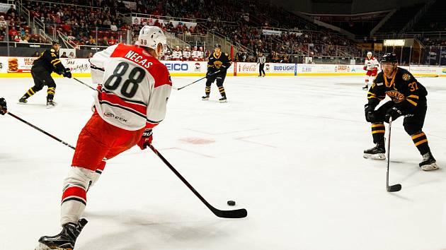 Hokejista Martin Nečas v dresu týmu AHL Charlotte Checkers.