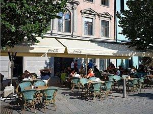 Zahrádky v centru Brna