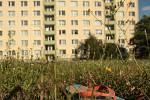 K tragické události došlo v Richterově ulici v brněnských Kohoutovicích ve čtvrtek kolem půl třetí odpoledne. Dvaatřicetiletá žena vyskočila z balkonu v sedmém patře, v náručí při tom měla svoji šestiletou dceru.