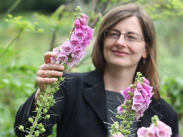 Výstava v brněnském Centru léčivých rostlin ukáže méně známé jedovaté květiny.