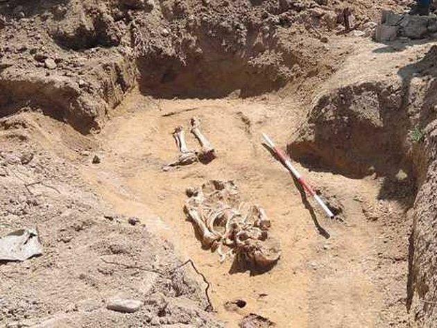 Pět hrobů objevili na své zahradě majitelé rodinného domu v Ivančicích.
